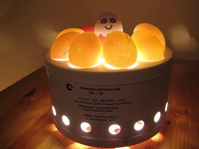 Овоскоп на 10 яиц ОН-10 - фото 5647